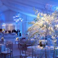 Winter Wonderland Decorations Sweet