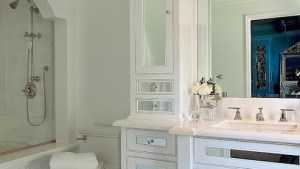 Arched Shower Alcove Transitional Bathroom Barclay