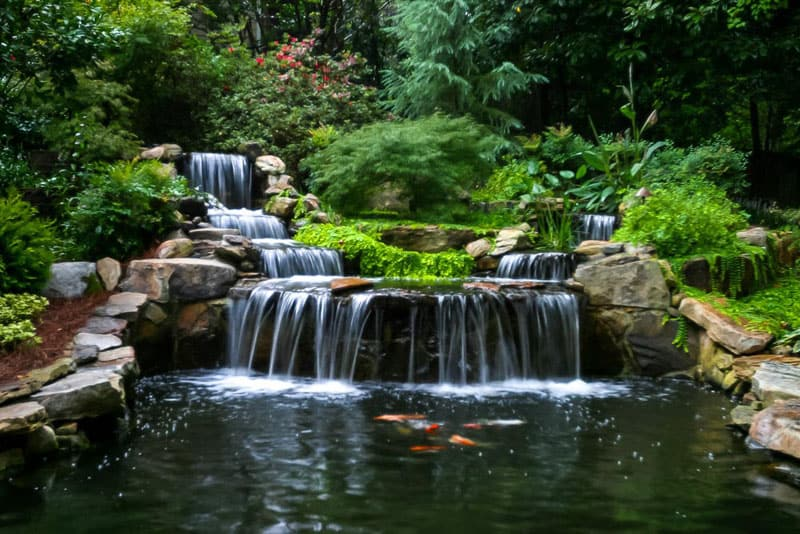 Animate your Landscape with Waterfalls, Koi Ponds, Aquatic ... on Landscape Pond Design id=91421