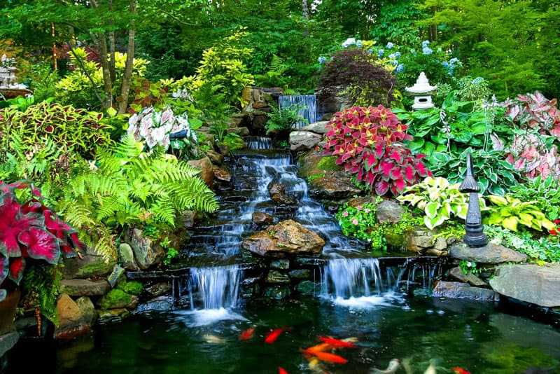 Animate your Landscape with Waterfalls, Koi Ponds, Aquatic ... on Landscape Pond Design id=11289