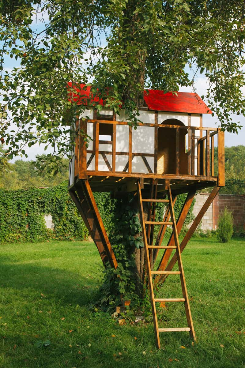 How to Build a Treehouse in the Backyard on Backyard House Ideas id=99818