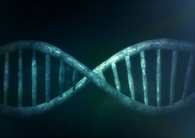 Image result for GENETIC TRAITS