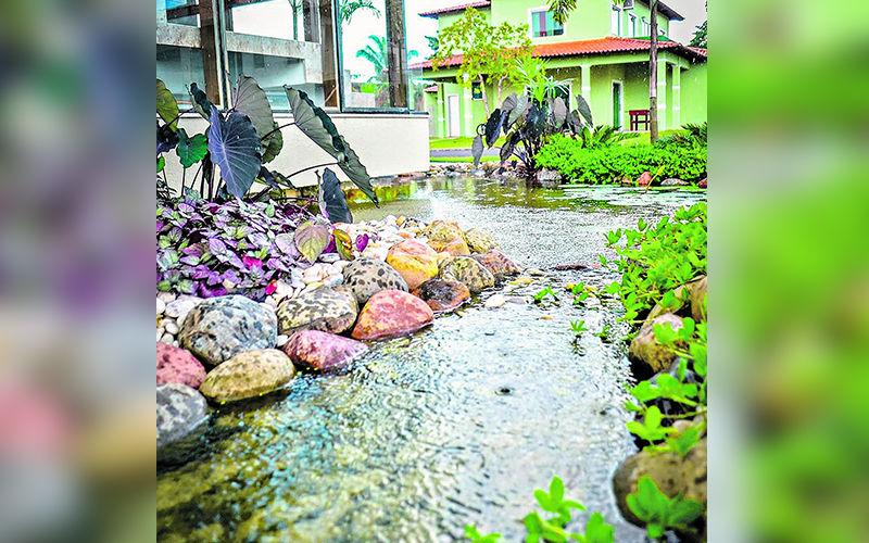 A Vitória Régia, Mercado de Lagos e Jardins concorre na categoria Mercado e Distribuição Pet.