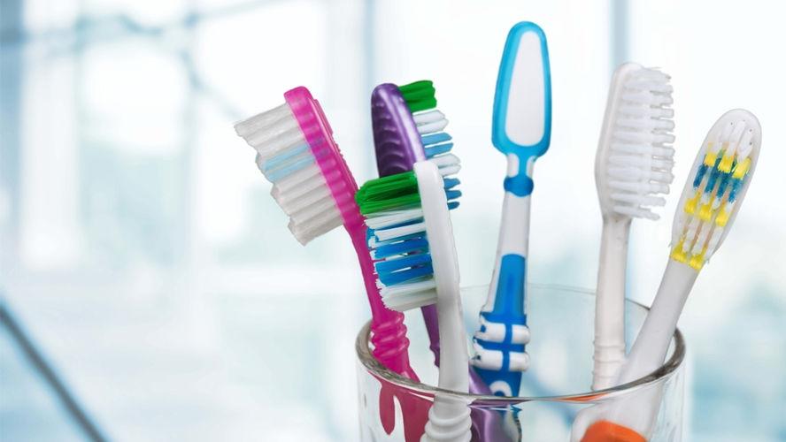 Se você não quer levar um monte bichinhos para a sua boca quando for escovar os dentes, trate de guardar direito a sua escova.