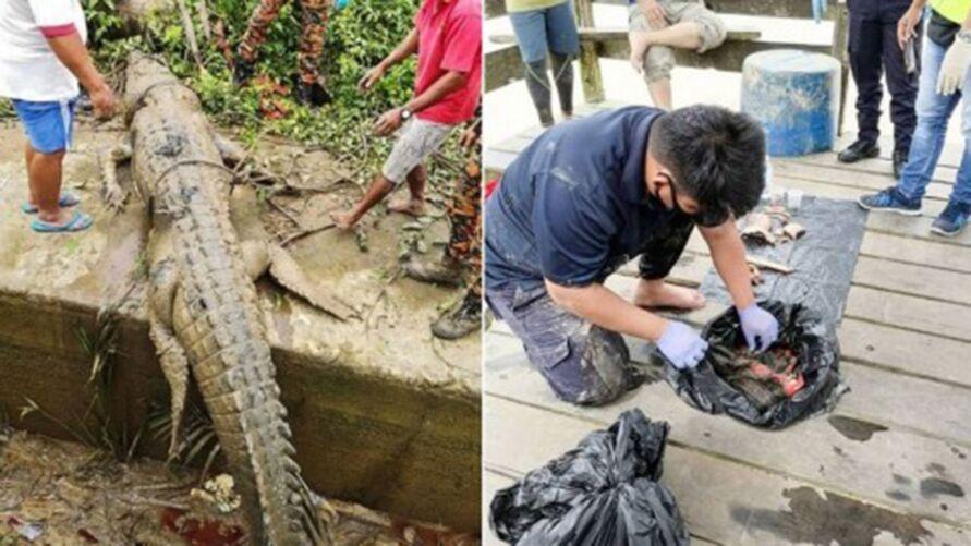 Algumas roupas e várias partes do corpo foram encontradas no estômago do crocodilo
