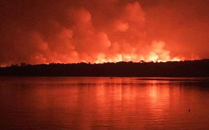 Fogo atingiu mais de 7% da área de proteção ambiental