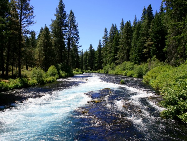 Difference Between Sea and River | Difference Between