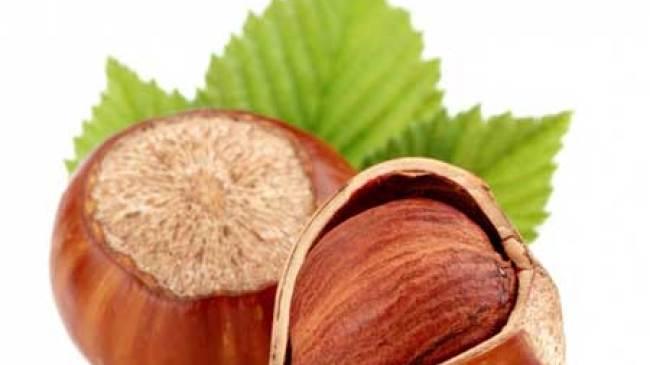 Manfaat Kacang Hazelnut