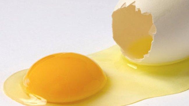 Telur Mentah Organik, Kaya Vitamin dan Bebas Bakteri Salmonella