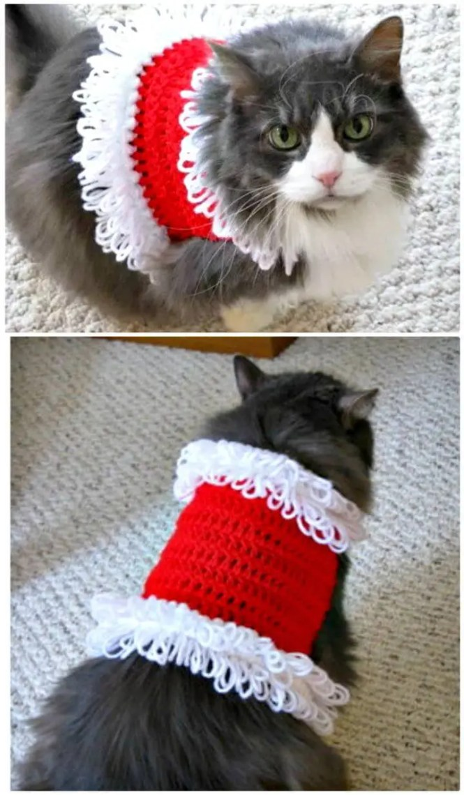 Famous Knitting Pattern For Cat Sweater Gift Easy Scarf Knitting