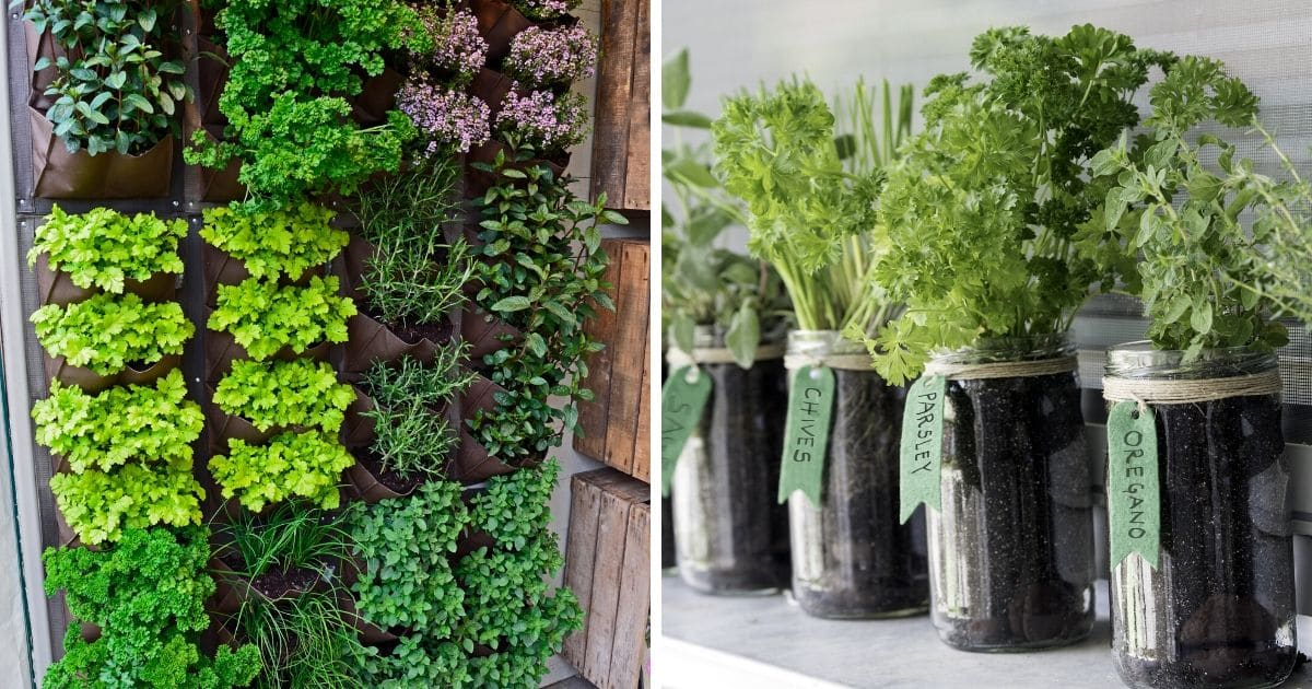 creative diy herb gardens for indoors