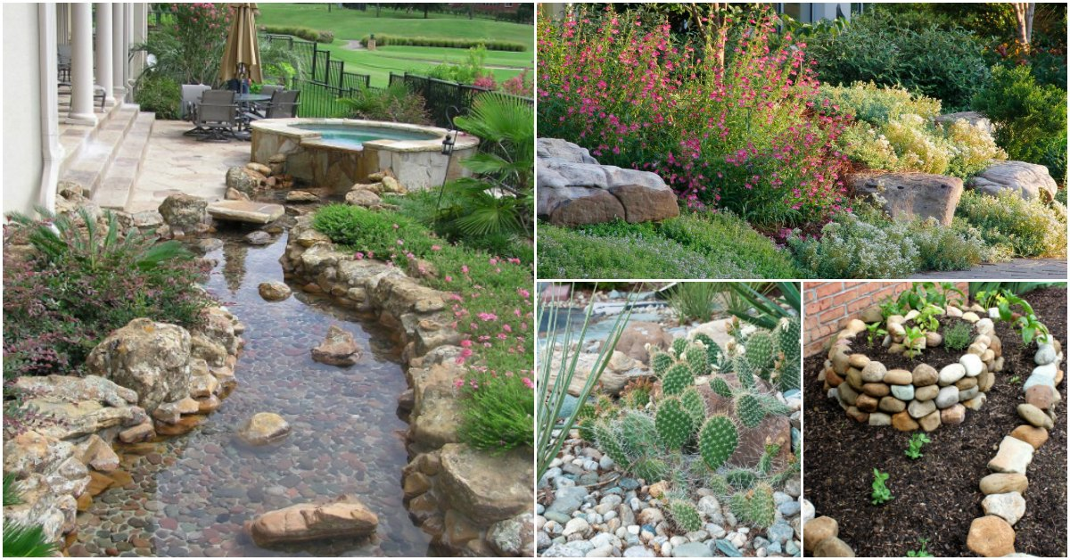 10 Gorgeous And Easy DIY Rock Gardens That Bring Style To ... on Small Garden Ideas With Rocks id=21492