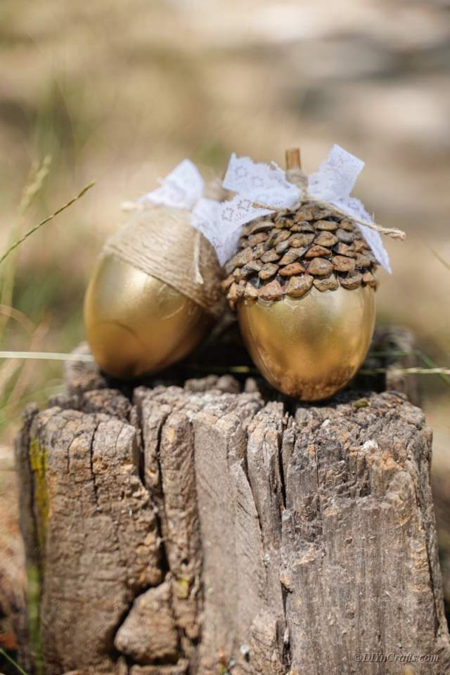 elle hazırlanmış dekoratif altın meşe palamudu çifti