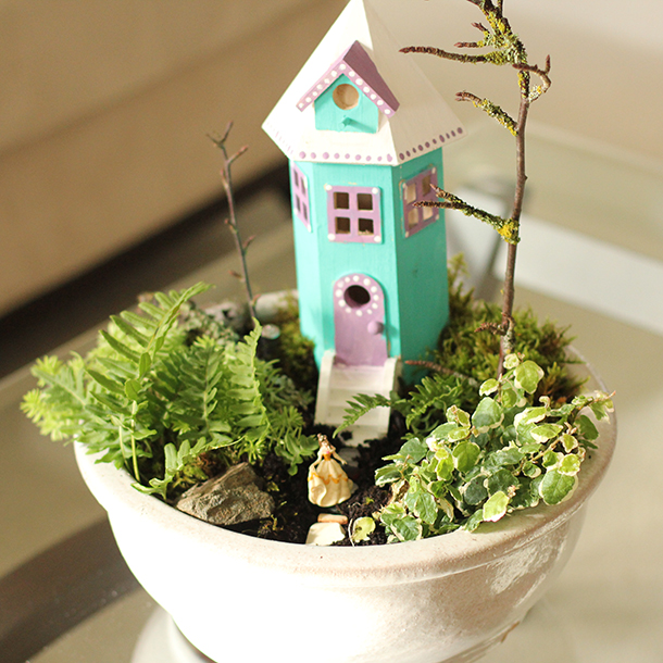 Indoor Gardens DIY Fairy Garden Planter with Home and Ferns