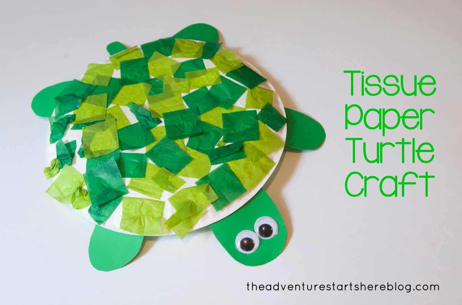 5 Fun Turtle Crafts
