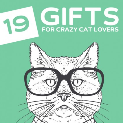 19 Funny Gifts For Cat Lovers Crazy Cat Ladies Dodo Burd