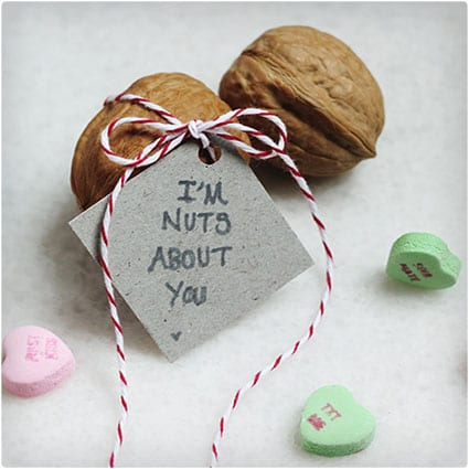 I'm-Nuts-About-You-Walnut-Valentine