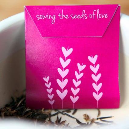 Seed-Packet-Valentine