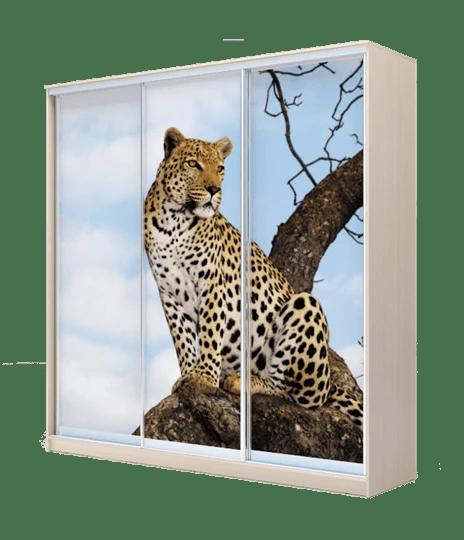 Шкаф-купе 3-х дверный 2400х1770х420, фотопечать, рисунок ...