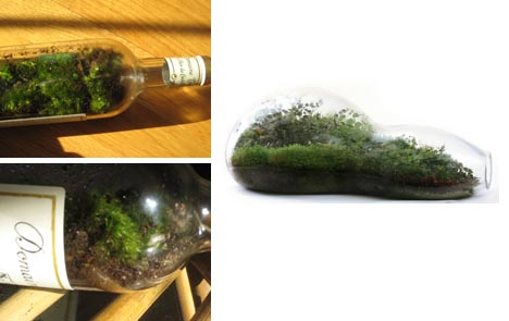 diy green recycled bottle idea