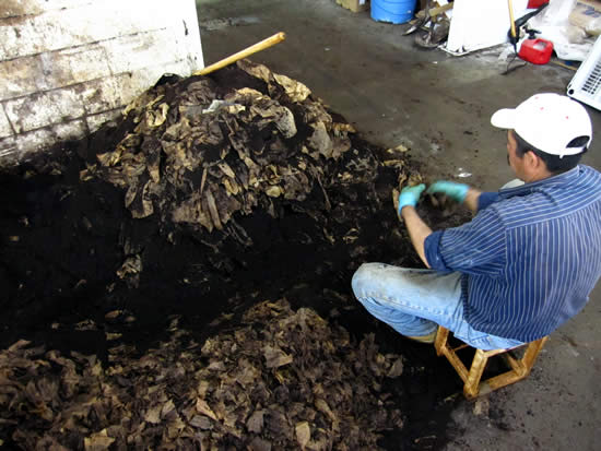Removing the Coffee Filters