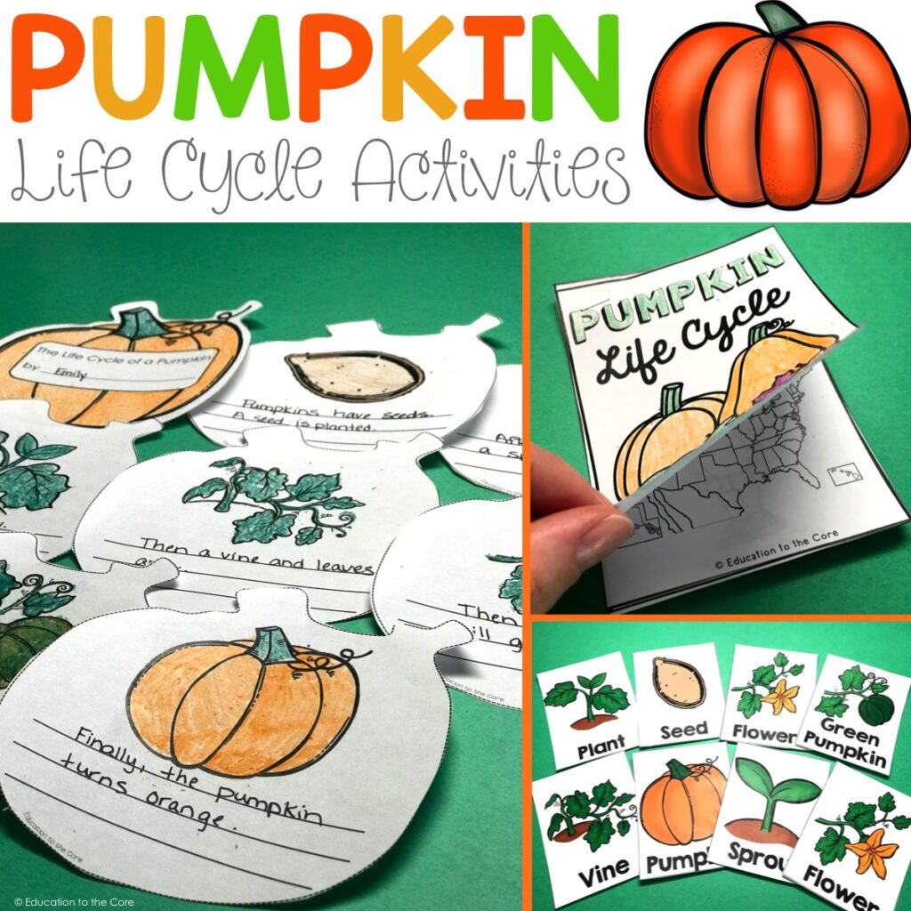 Pumpkin Life Cycle Writing Pack And Freebie
