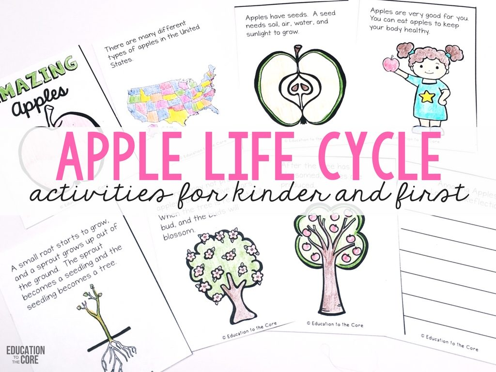 I Like This Activity For The Purpose Of Talking About Apple Kindergarten Science Worksheets