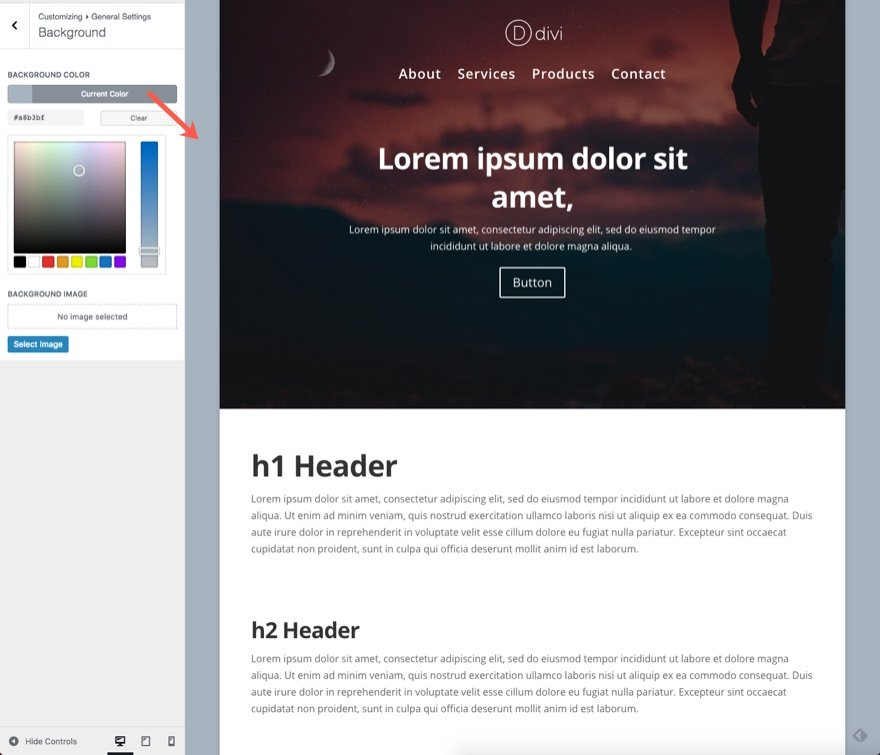 Divi Theme Customizer