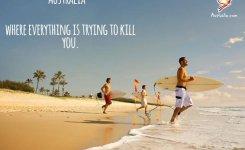 We Fix Your Adverts Honest Funny Ads Australia