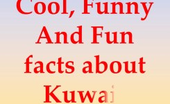 Cool Funny And Fun Facts About Kuwait