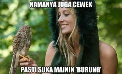 Meme Burung Lucu