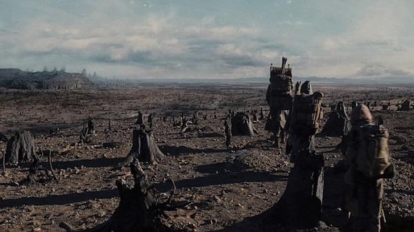 noah landscape