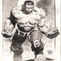 Top 5 Comic Book Monsters - Lee Weeks Hulk
