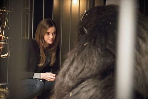 Caitlin Snow, Gorilla Grodd - The Flash
