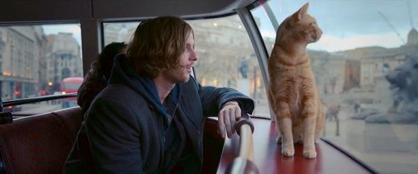 a-street-cat-named-bob-bust