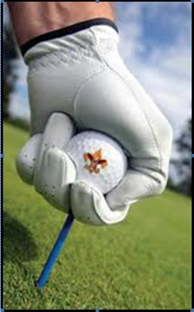 Golf Ball Scouting