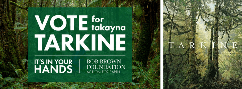 Virtual Tarkine tasmania The Bob Brown Foundation at Real World Vr & Transitions Film Festival