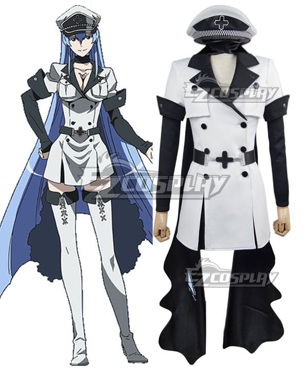 Akame Ga Kill! Jaegers Esdeath Cosplay Costume - Only Dress