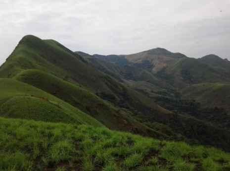 Mount Nimba Strict Nature Reserve
