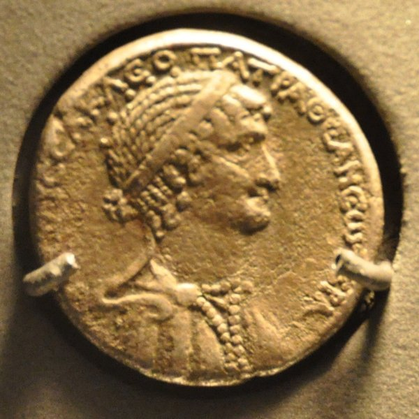 Contrary to popular belief, Greek ruler Cleopatra could have been of  African descent - Face2Face Africa