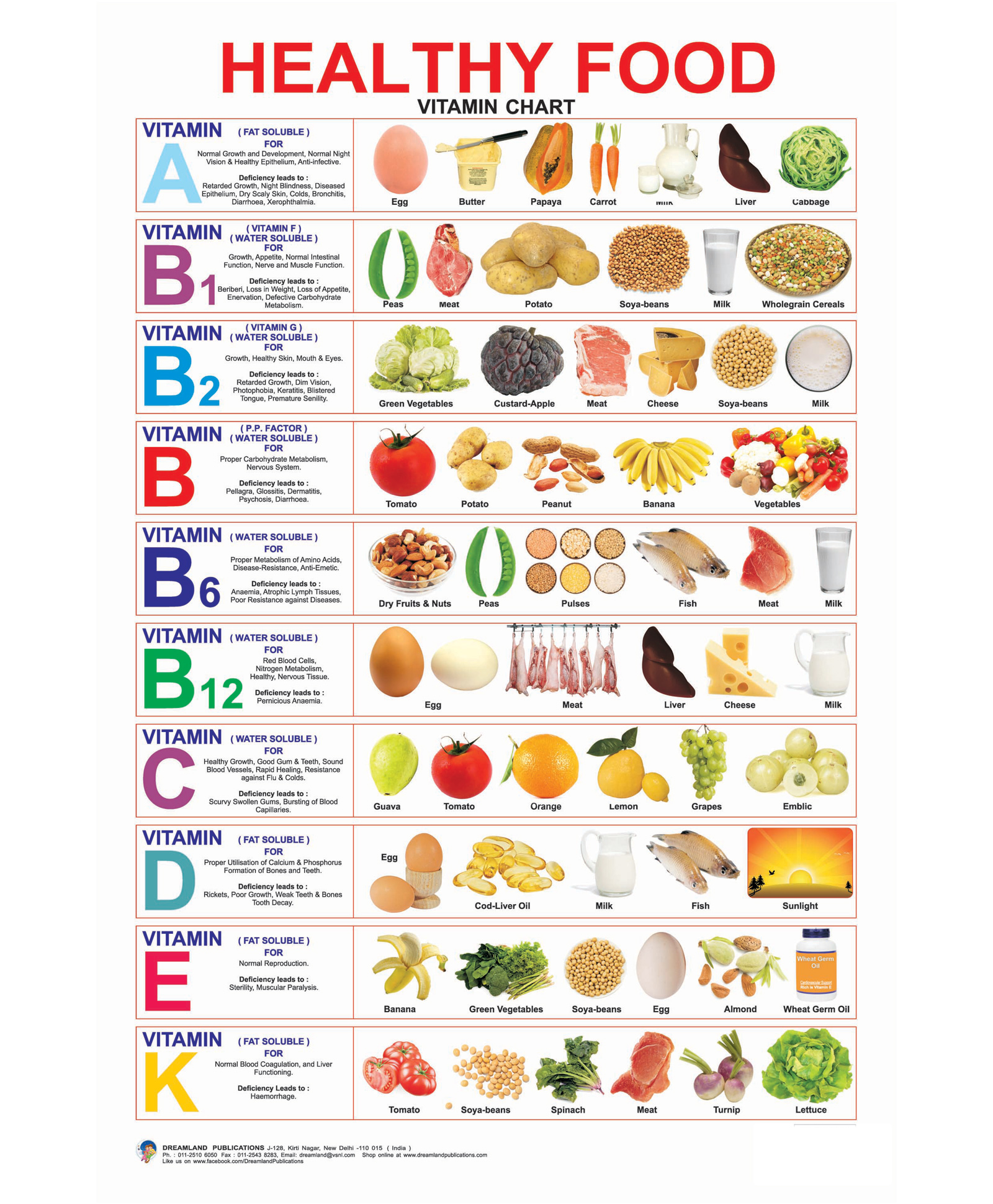 Healthy Food Vitamin Chart English Online In India Buy At Best Price From Firstcry