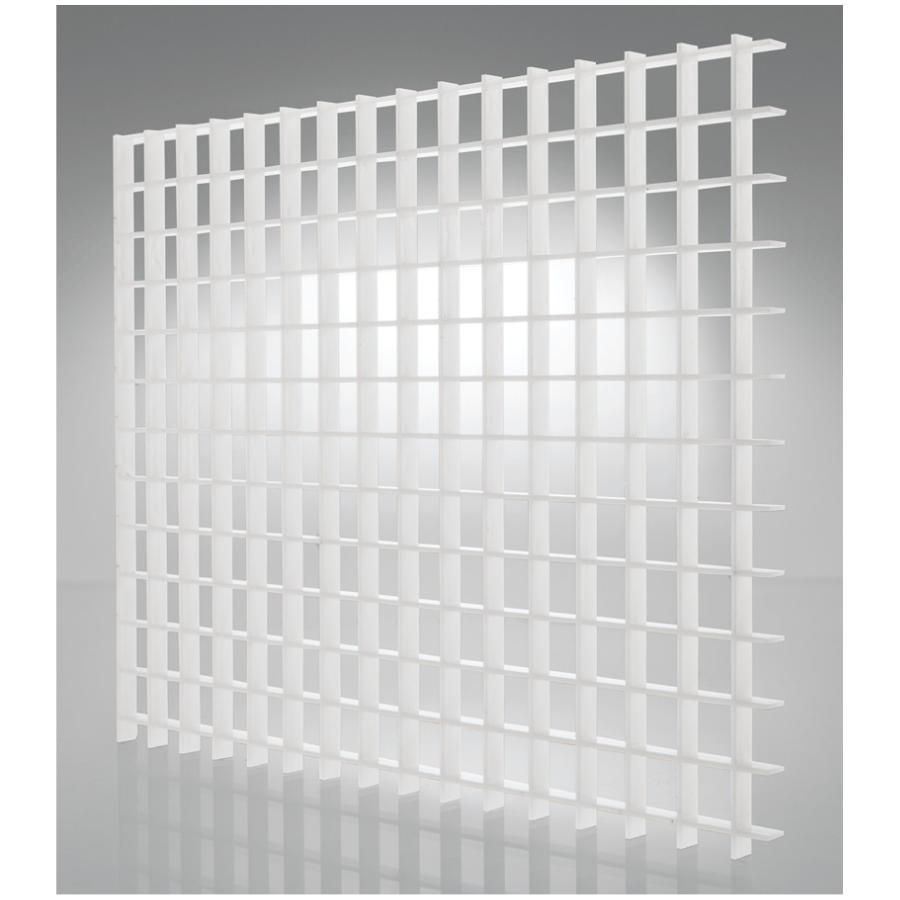 2 x 4 white eggcrate styrene light