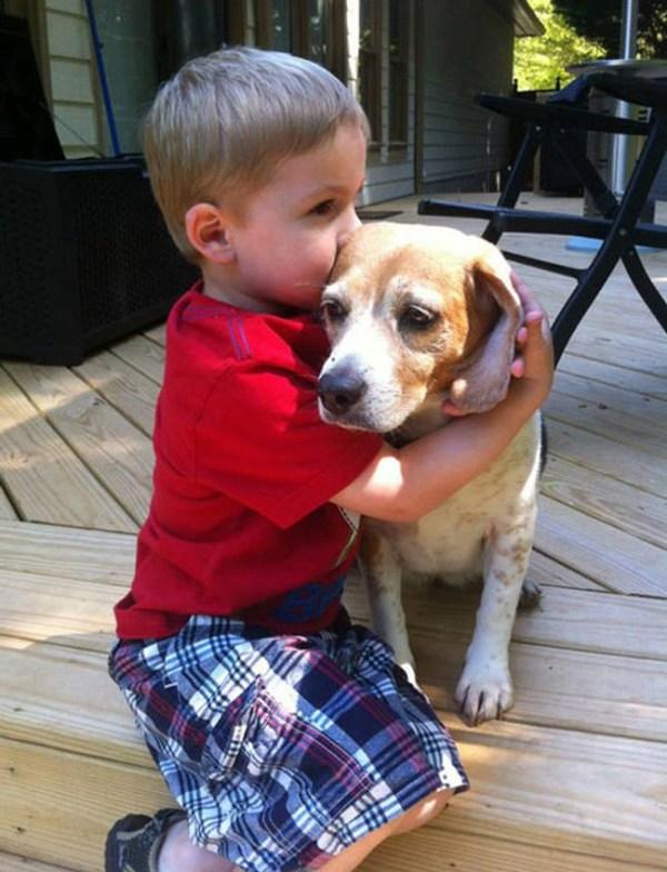 Очень милые фотографии детей с собаками