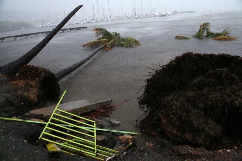 Гавань города Фахардо, Пуэрто-Рико, после прохождения урагана Ирма Центральная Америка, ирма, катастрофа, разрушения, стихийное бедствие, стихия, ураган, флорида