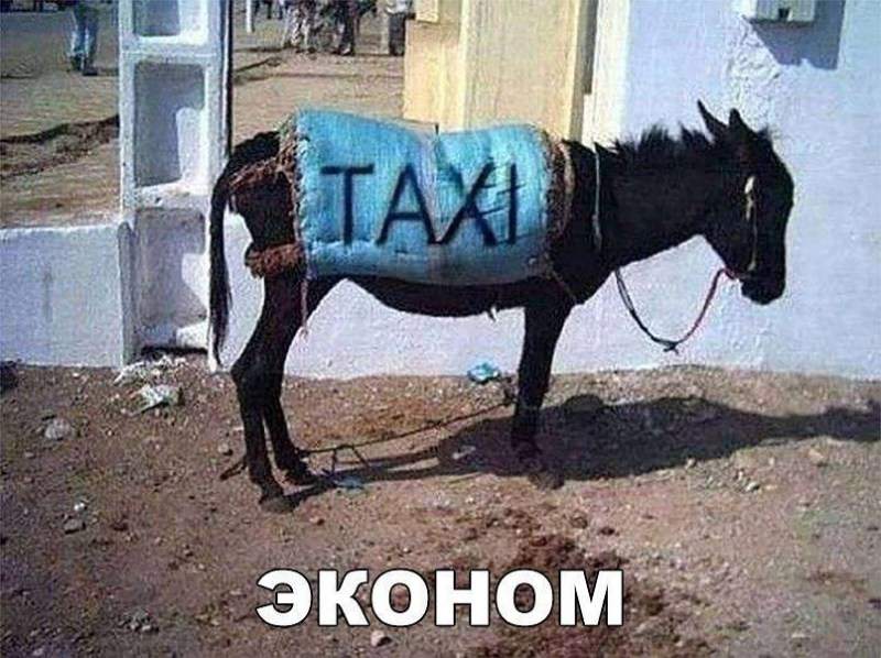 Такси бывают разными дорога, неадекватные пассажиры, такси, таксисты