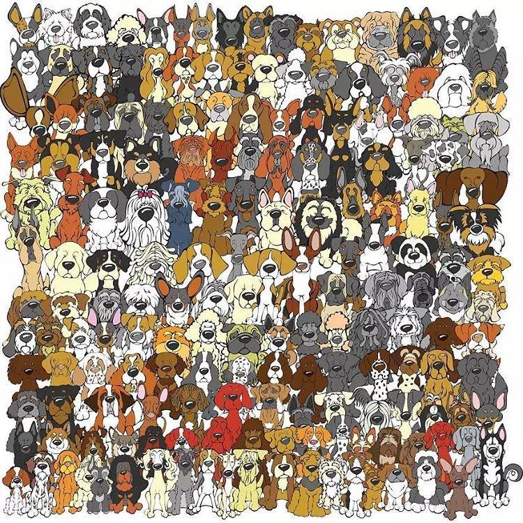 Найдите панду! внимательность, гениальность, головоломки, интересное