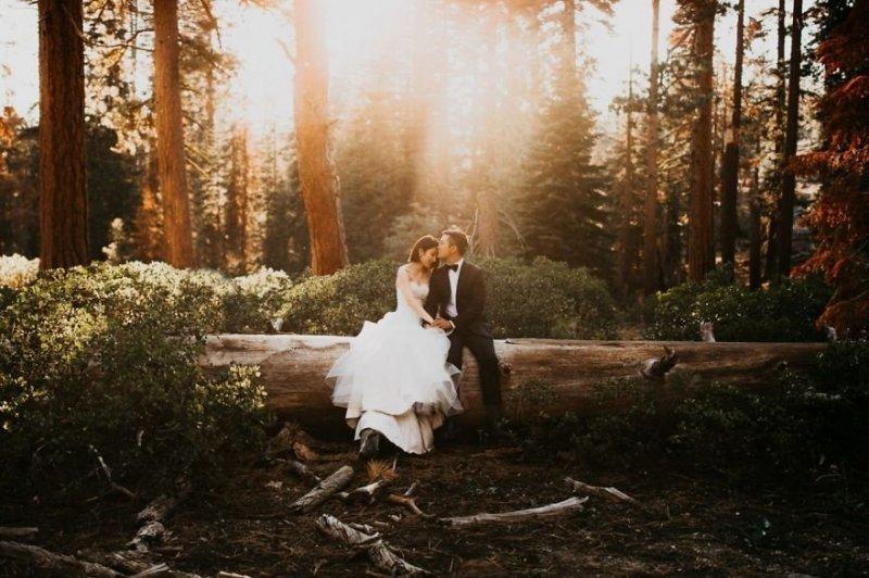 Йосемитский национальный парк, США. Любовь, отношения, свадебное фото, свадьба, фото, фотограф, фотография