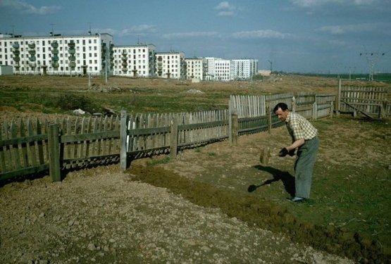 Огород на окраине Москвы. Зюзино, 1964 год СССР, история, фотографии