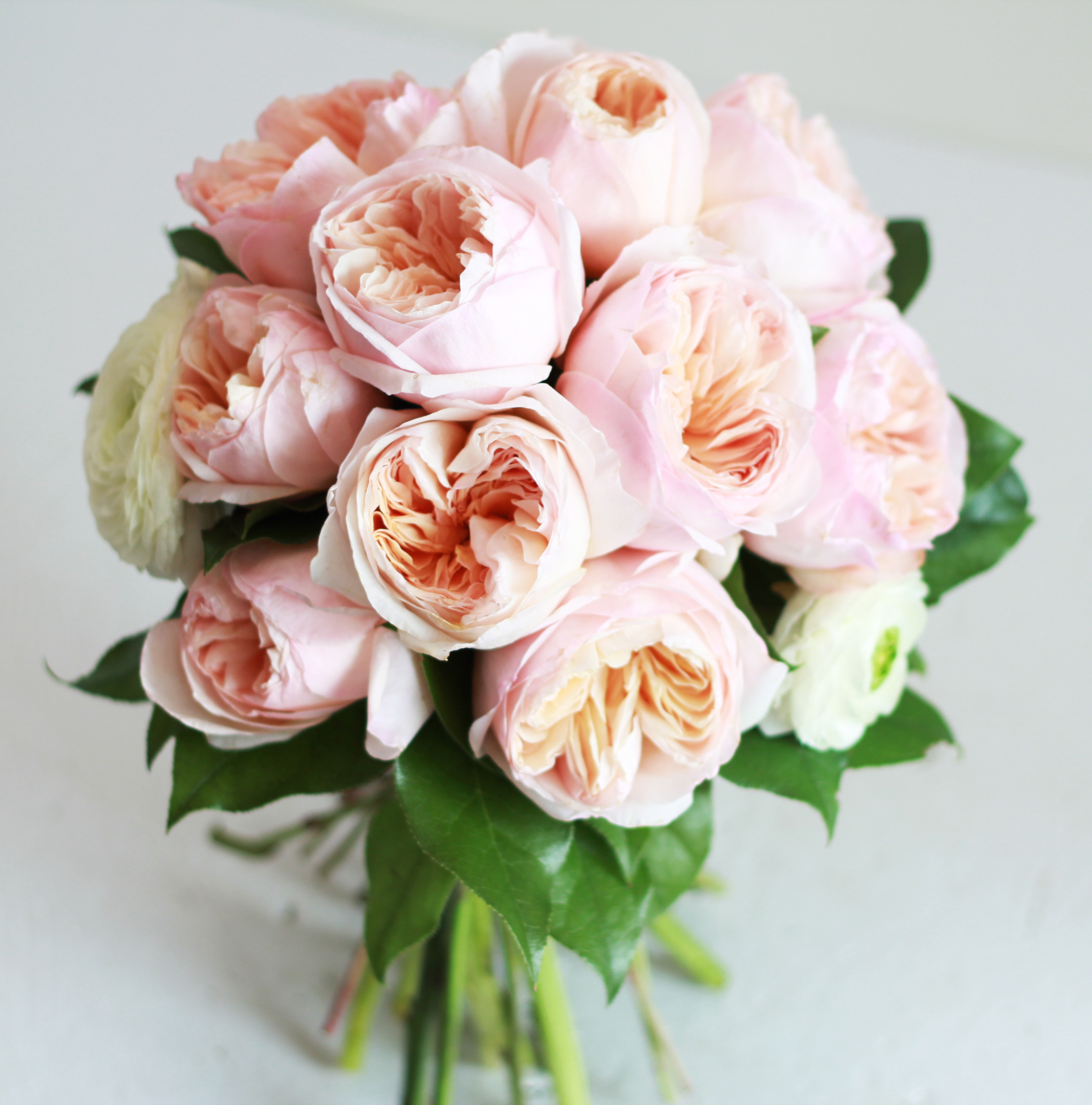 12/05/2015· a rose garden can be as simple as a single rose specimen interspersed with a few other plants, or an elaborate landscape filled with multiple rose species, hardscape and arbors. Garden Roses Wedding Bouquet