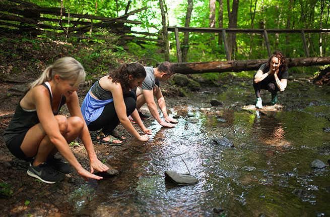 Risultati immagini per forest bathing